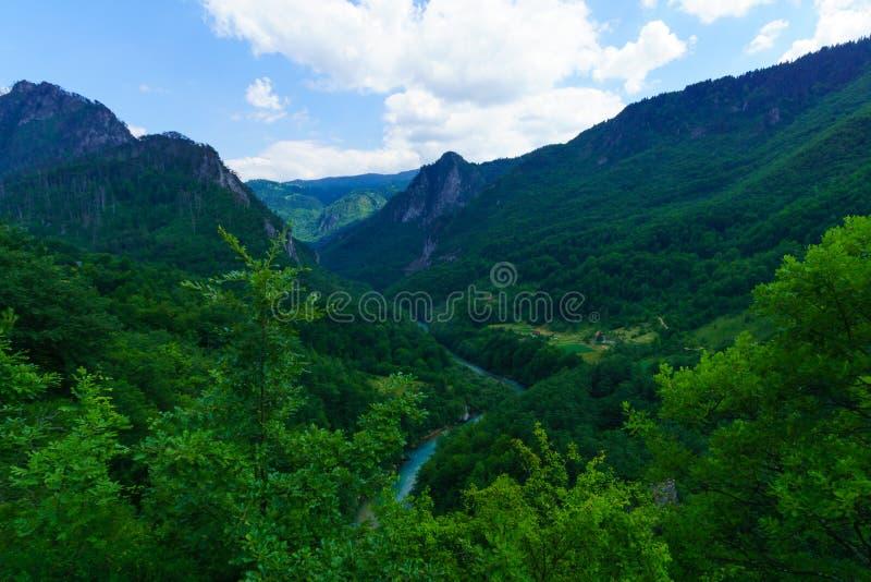 塔拉河和峡谷 免版税库存图片