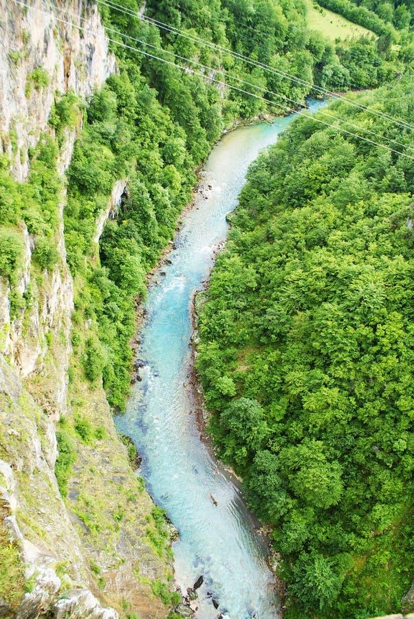 塔拉河在黑山,从上面的看法 免版税库存照片