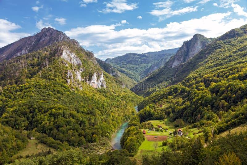 塔拉河峡谷,黑山 免版税库存图片