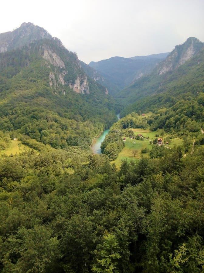 塔拉河的山和峡谷 图库摄影