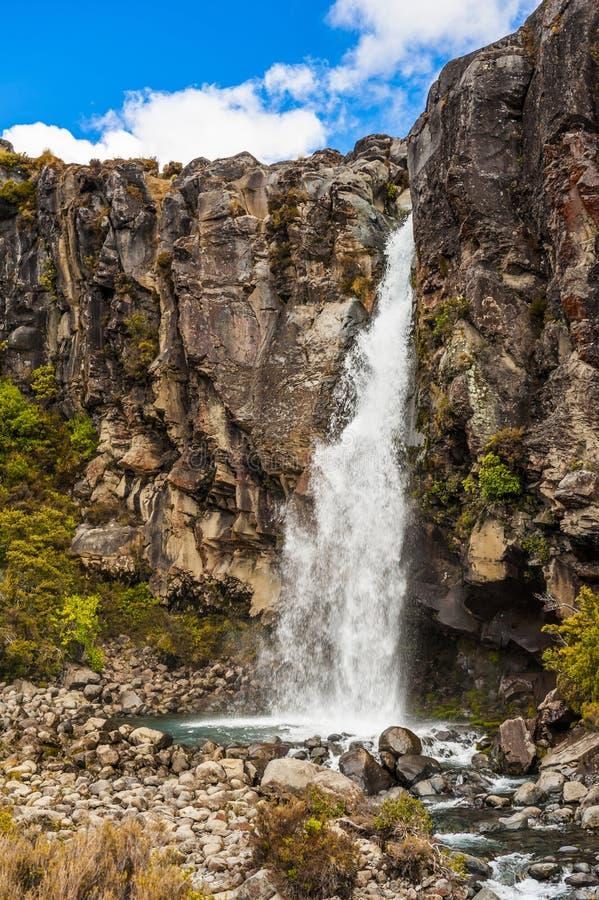 塔拉纳基在新西兰跌倒 库存图片