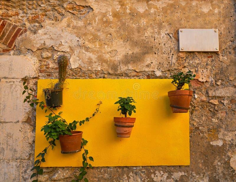 塔拉贡纳老Tarraco街道在加泰罗尼亚 库存图片