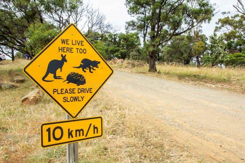 塔斯马尼亚的袋鼠、塔斯马尼亚恶魔和针鼹野生生物的路边警报信号 免版税库存照片