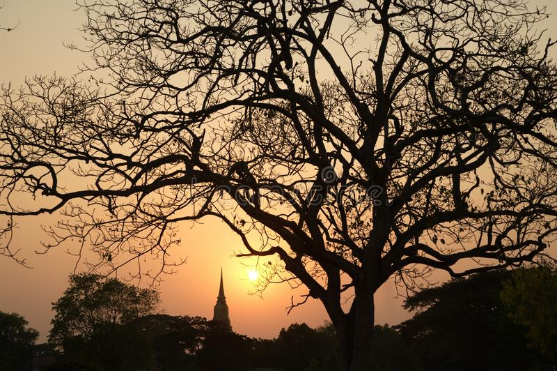 塔暮色场面剪影在阿尤特拉利夫雷斯历史公园在泰国 免版税库存照片