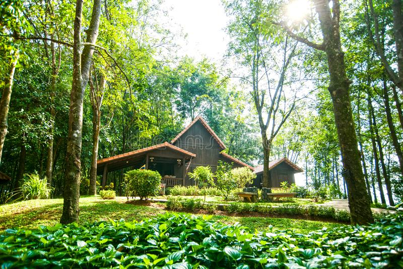 塔曼WARISAN PERTANIAN农业遗产公园 免版税库存照片