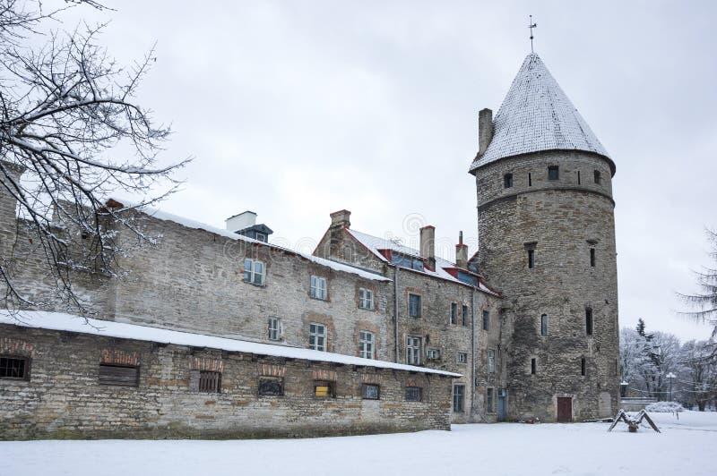 塔林堡垒墙壁  免版税库存图片