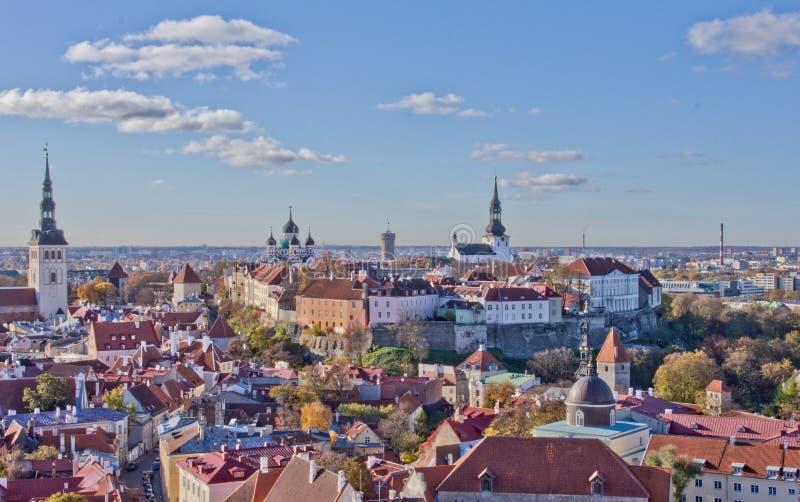 塔林奥尔德敦,晴天的五颜六色的爱沙尼亚风景夏天视图  塔林五颜六色的屋顶 城市的鸟瞰图 库存图片