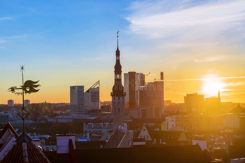 塔林,爱沙尼亚早晨全景  免版税库存图片