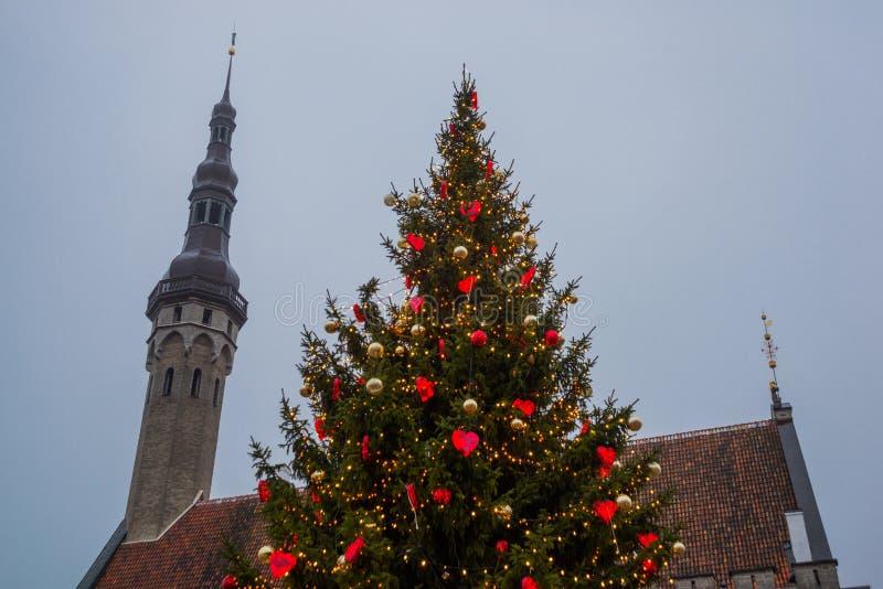 塔林,爱沙尼亚:新年风景 城镇厅和圣诞树在光 库存图片