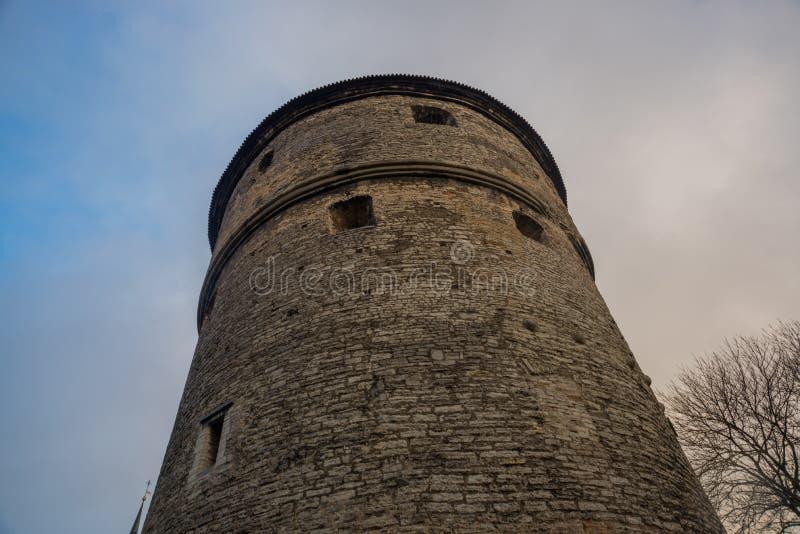 塔林,爱沙尼亚:济科在de科克Museum和在中世纪塔林防御市墙壁的本营隧道 科教文组织世界遗产站点 库存图片