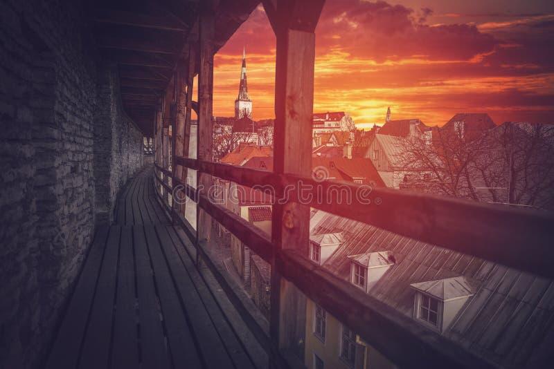 塔林-爱沙尼亚的首都 库存图片