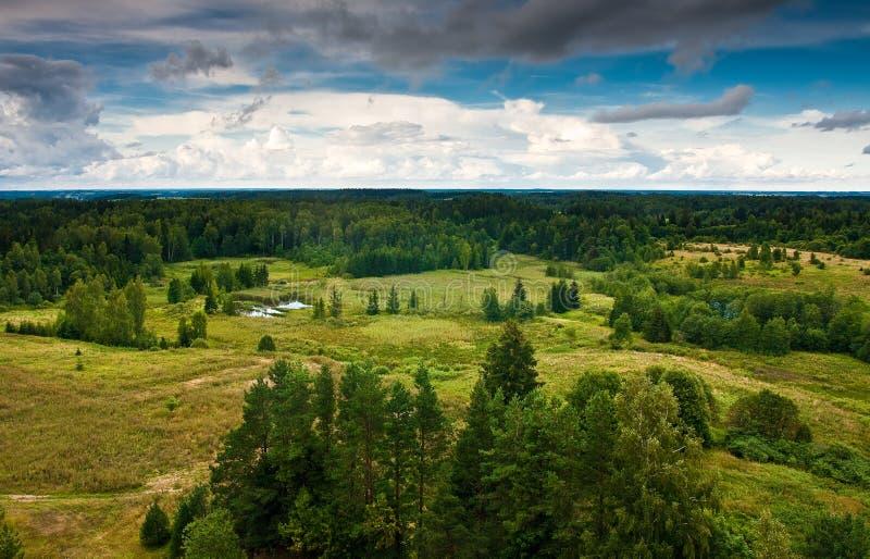 从塔的看法,立陶宛4 免版税库存图片