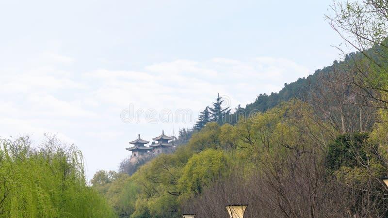 塔看法在绿色庭院里 库存照片