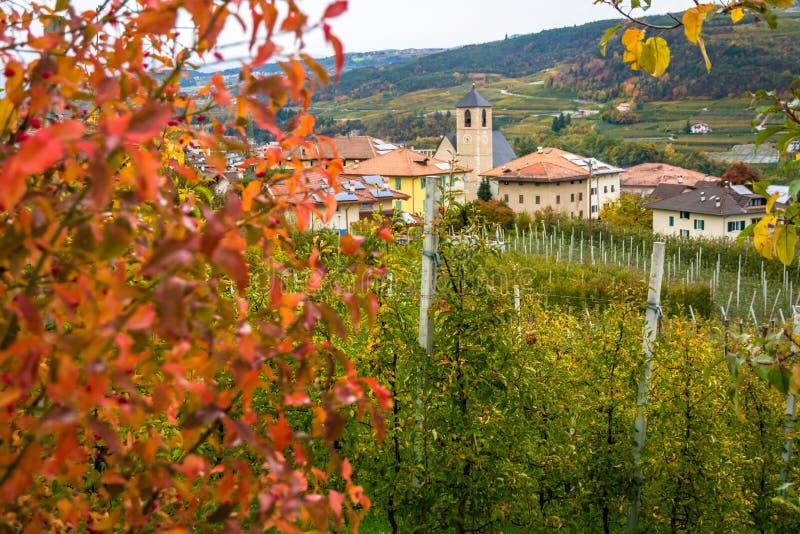 塔苏洛,位于Val的村庄秋天视图di Non,特伦托自治省女低音阿迪杰,意大利 村庄为它美好的orch是著名的 图库摄影