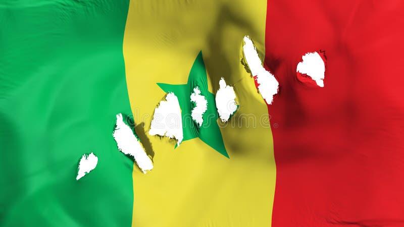 塞内加尔旗子穿孔了,弹孔 库存图片