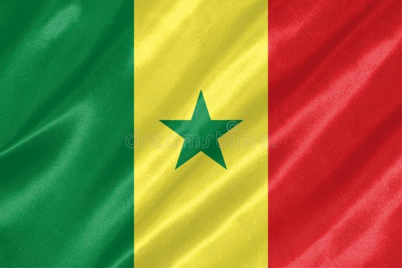 塞内加尔旗子 免版税库存图片