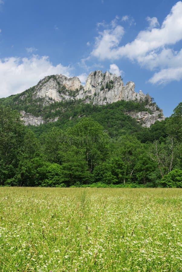 塞内卡岩石 库存图片