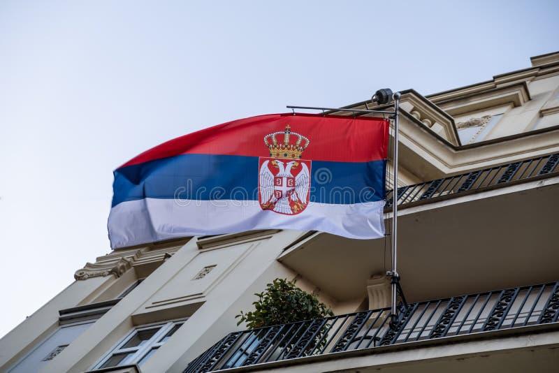 塞尔维亚、欧洲国旗 免版税库存图片