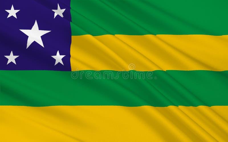 塞尔西培州,巴西旗子  库存照片