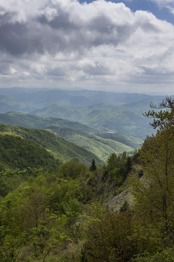 塞尔维亚山 免版税库存图片