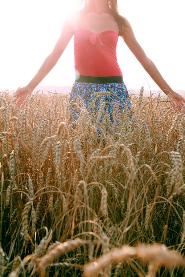 塞纳河的女孩 库存图片