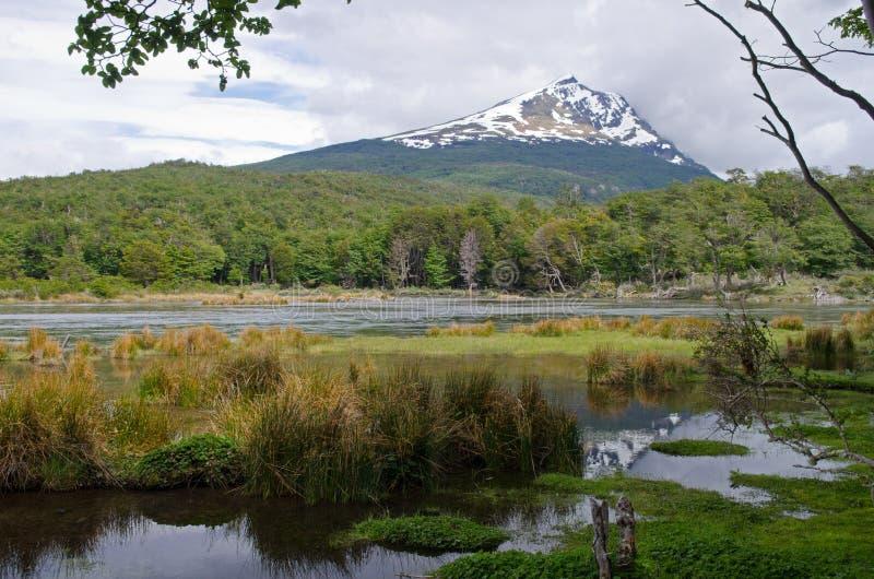 塞罗神鹰和Lago Roca在火地群岛国家公园,我们 库存图片