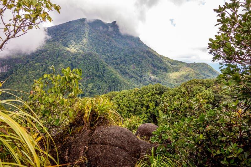 塞舌尔山国家公园- Mahe -塞舌尔群岛 库存照片