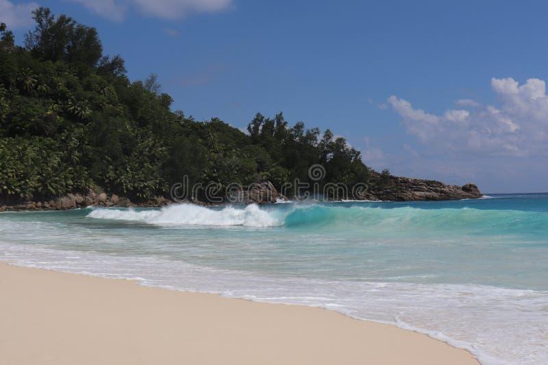 塞舌尔海岛沙子海洋 图库摄影