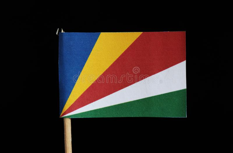 塞舌尔的一面国旗牙签的在黑背景 从五条倾斜带蓝色,黄色,红色包括,白色和g 免版税库存图片