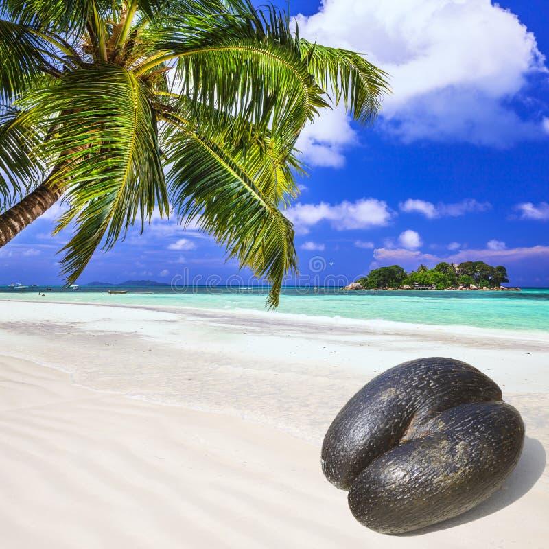 塞舌尔群岛海岛 免版税库存照片