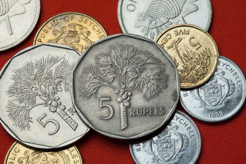 塞舌尔群岛的硬币 椰子椰树nucifera掌上型计算机 免版税库存图片