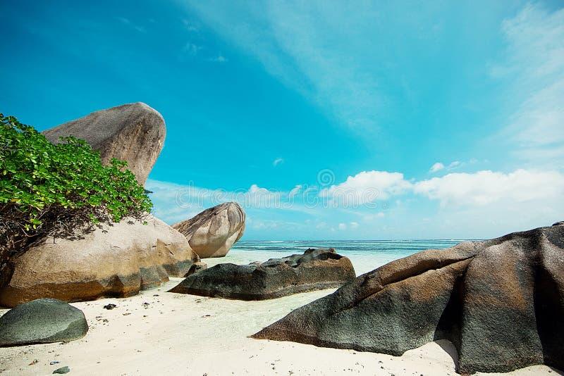 塞舌尔群岛 黑石头,山 热带和棕榈树 库存图片