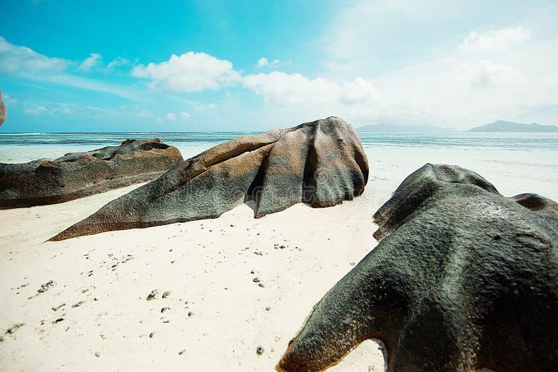 塞舌尔群岛 黑石头,山 热带和棕榈树 免版税库存照片