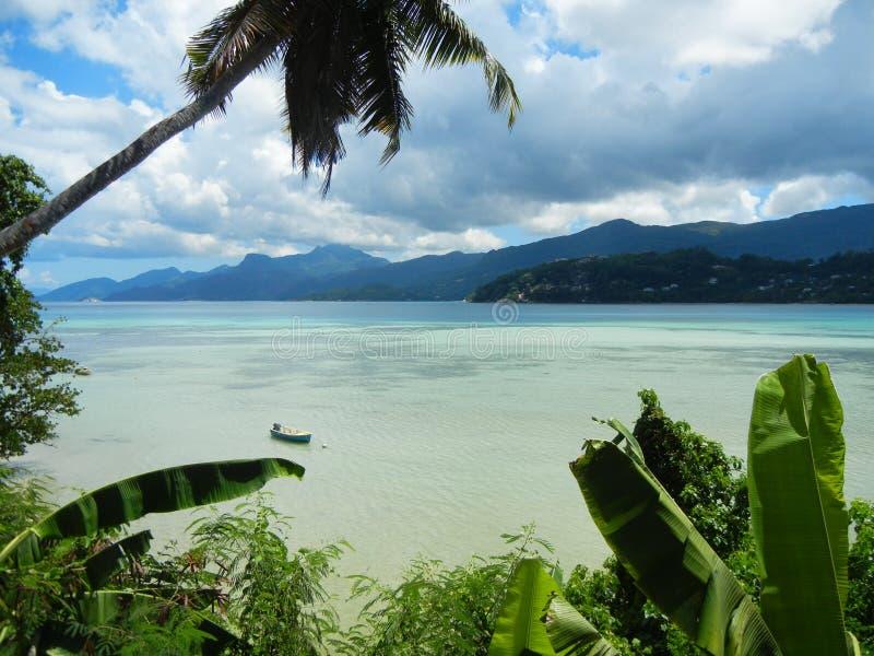 塞舌尔群岛- Anse La Mouche 库存照片