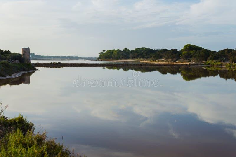 塞萨利内斯,福门特拉岛 库存图片
