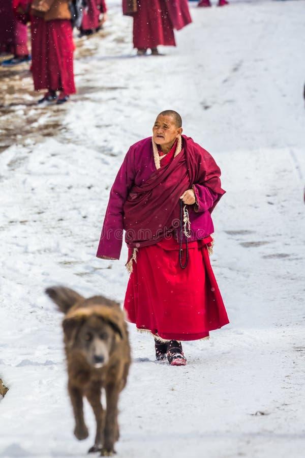 塞达,四川,中国3月08,2016,塞达buddhish学院的修士 免版税库存图片