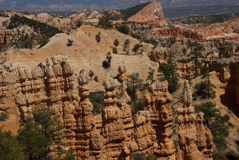 仙境峡谷俯视C 免版税库存图片