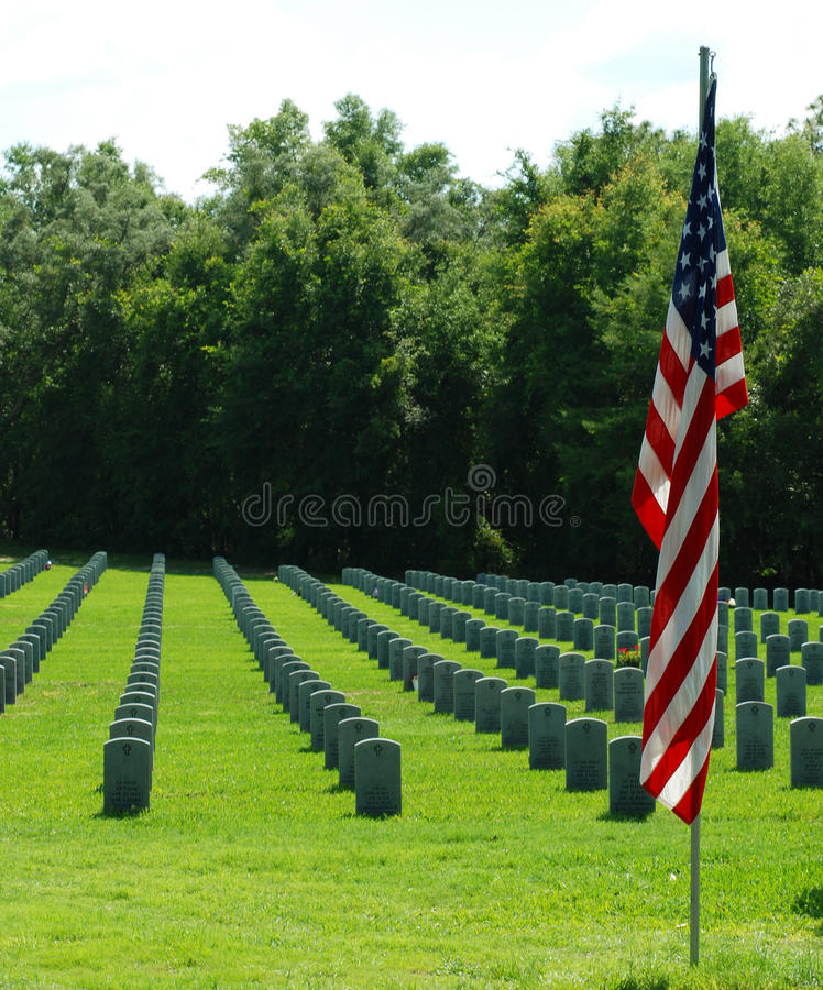 墓地佛罗里达国民 库存图片