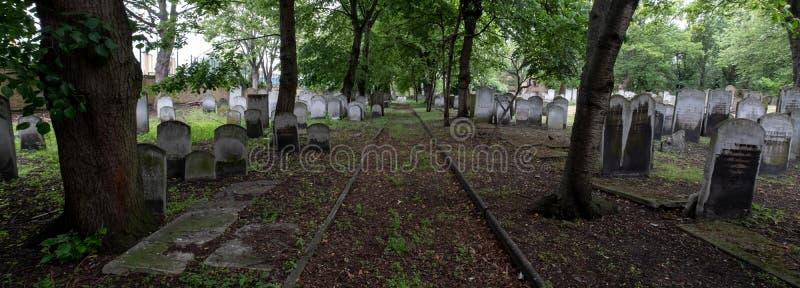 墓碑全景照片在历史的犹太公墓的布兰蒂街的,白教堂,东伦敦 免版税库存图片