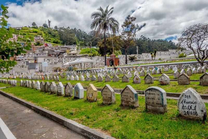 墓碑行在草的在公墓圣地亚哥 免版税库存图片