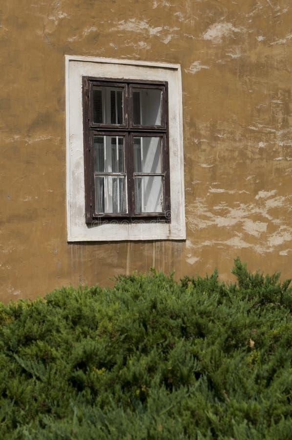 墙上的旧窗户 库存图片