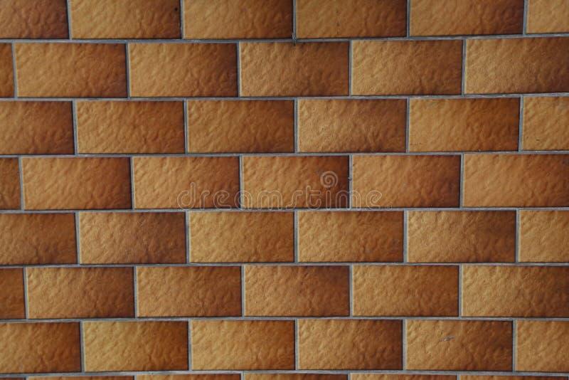 墙壁标示用瓷砖 免版税库存图片