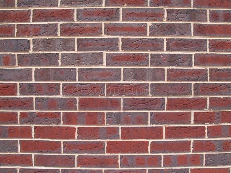 墙壁的砖接近的灰色红色 库存图片