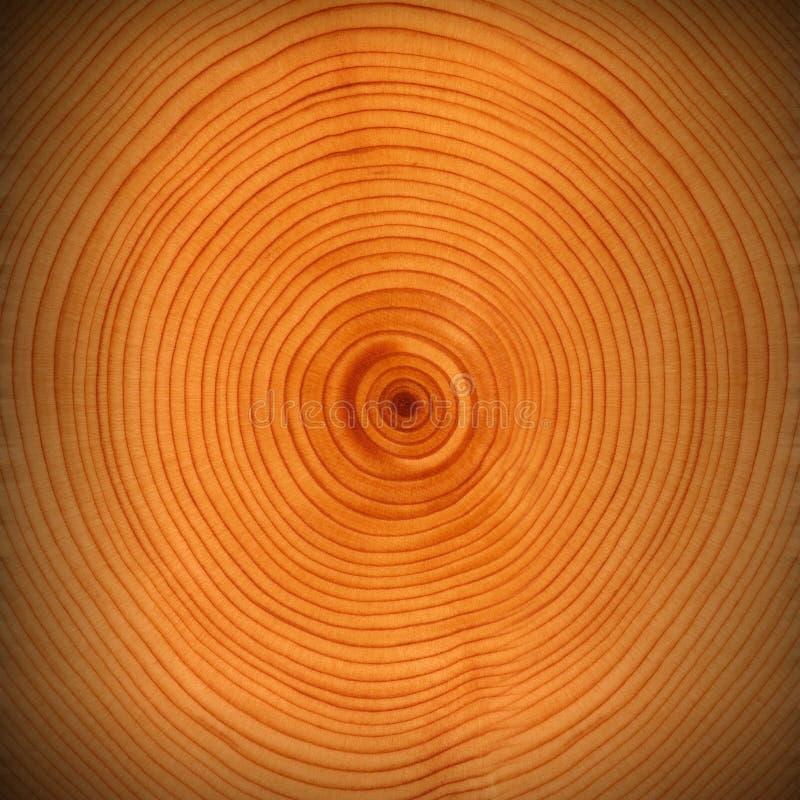 墙壁背景纹理木头褐色 免版税库存图片