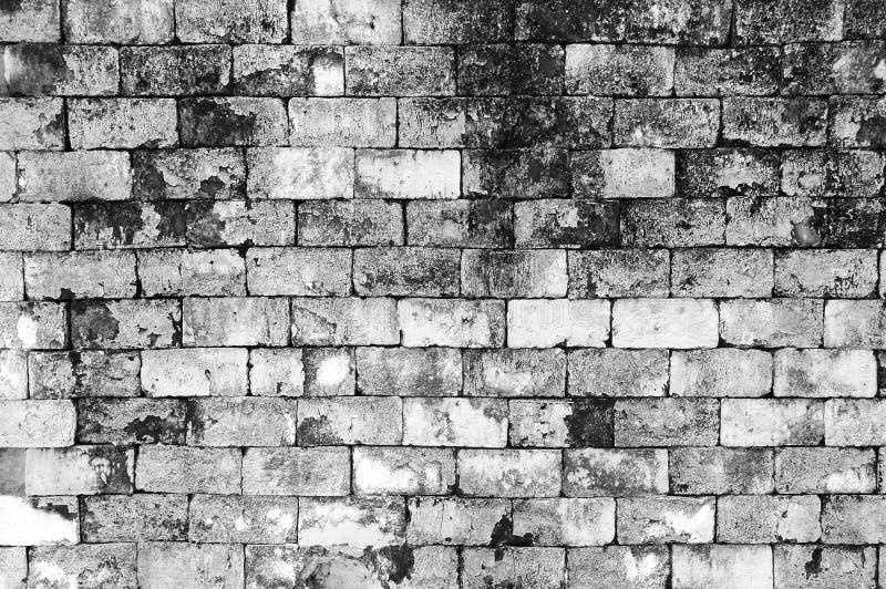 墙壁难看的东西黑白砖油漆颜色背景 肮脏,尘土老墙壁红砖、背景纹理和飞溅白色或者 免版税库存图片