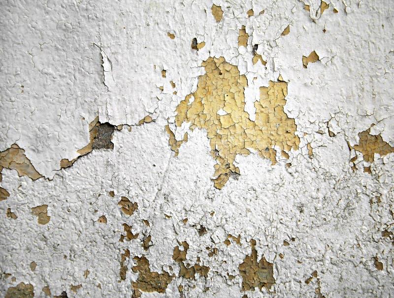 墙壁颜色拷贝 免版税库存图片