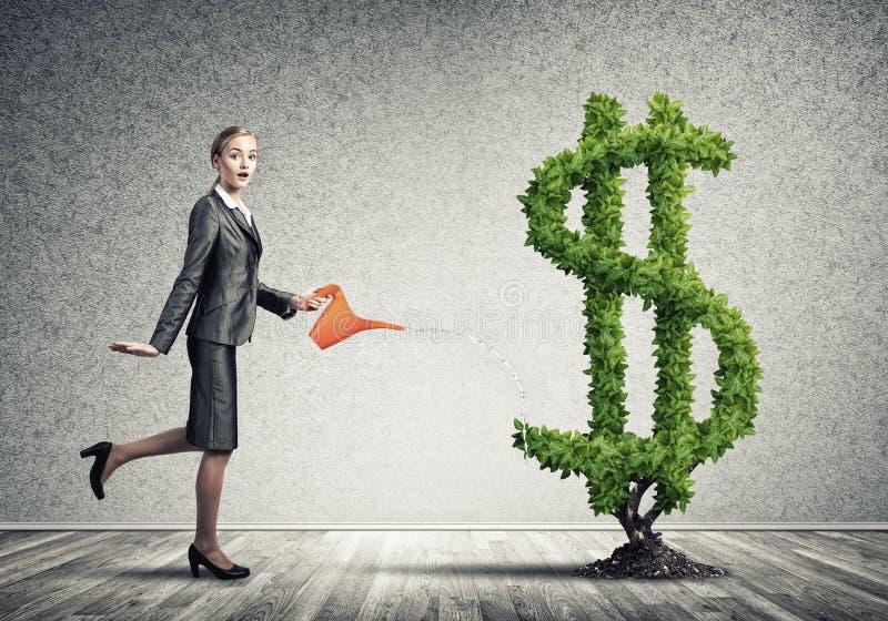 增长挣货币您 库存例证