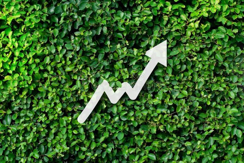 增长的事务和未来概念的攒钱 库存图片