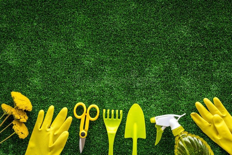 增长的植物的设备在绿草背景顶视图空间的庭院里文本的 库存图片