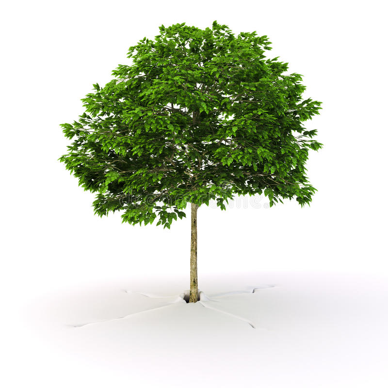 增长的结构树 向量例证